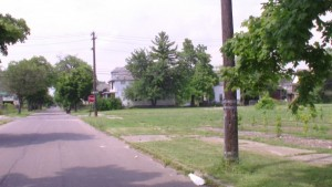 Hantz Woodlands – A Tree Grows (Actually It's More Like 20,000) In Detroit
